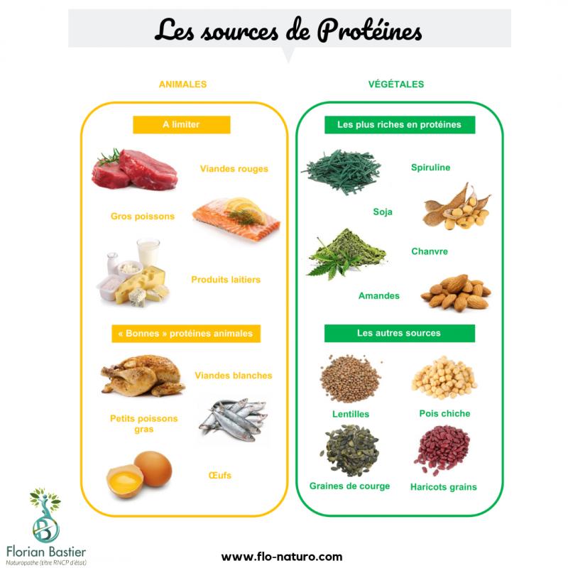 Les sources de proteines